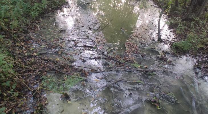 В Дзержинске ручей превратился в канализацию