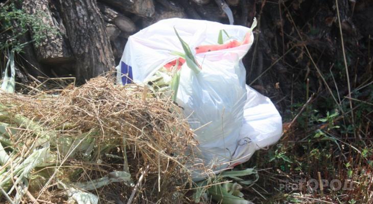 77 незаконных свалок обнаружили в Дзержинске