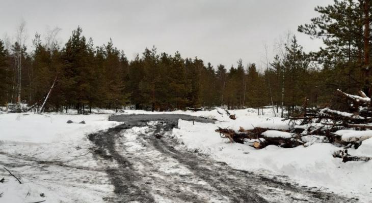 Опубликованы результаты анализа вещества, которое обнаружили в лесах Дзержинска