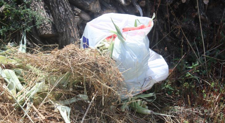 Дзержинск переходит на раздельное накопление мусора