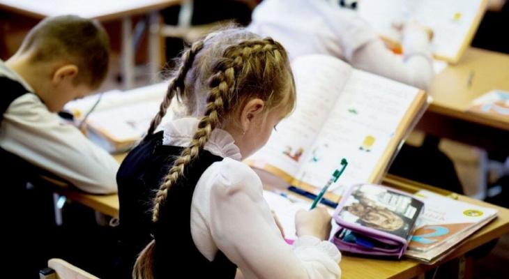 Стало известно, кто из нижегородских школьников может не посещать учебу в морозы