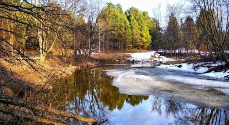 Потепление до +9 ожидается в Дзержинске