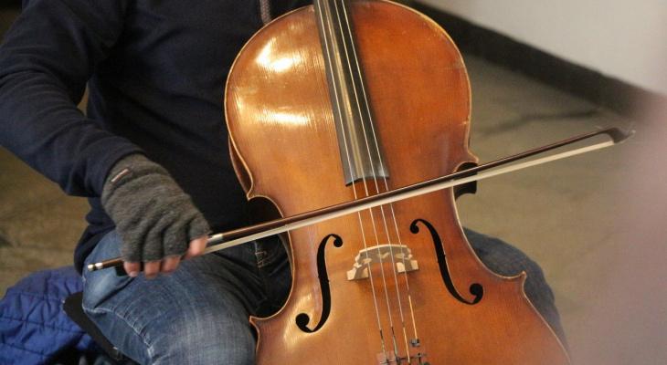 Дзержинскую скрипачку обворовали лже-полицейские